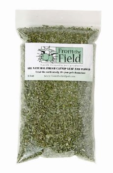 From the Field - Catnip Leaf and Flower Bag - 2.5 oz