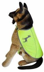 Alcott - Visibility Dog Vest - Yellow - Large
