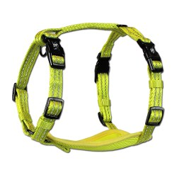 Alcott - Visibility Harness - Yellow - Small