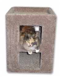 Beatrise - Cat Furniture - 2 Story Kitty Cube