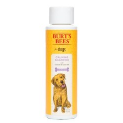 Burt's Bees - Calming Shampoo with Lavender & Green Tea - 16 oz