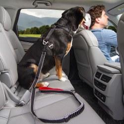 Kurgo - Seatbelt Leash Buckle