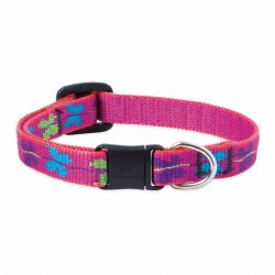 Lupine - Adjustable Cat Collar - Wing It