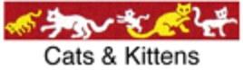 Beastie Bands - Cat Collar - Cats & Kittens