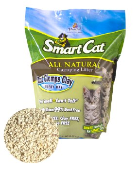Smart Cat Grass Clumping Litter - 10lb