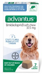 Advantus - Large Dog - 7 ct