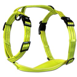 Alcott - Visibility Harness - Yellow - Large