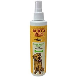 Burt's Bees - Deodorizing Spray with Apple & Eucalyptus - 10 oz