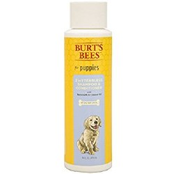 Burt's Bees - Tearless Puppy Shampoo - 16 oz