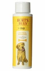Burt's Bees Oatmeal & Honey Shampoo - 16 oz