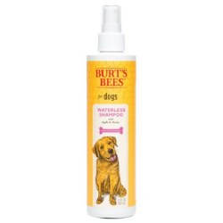 Burt's Bees - Waterless Shampoo Spray with Apple & Honey - 10 oz
