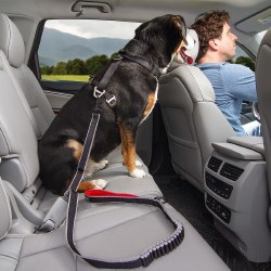 Kurgo - Seatbelt Leash Buckle