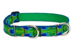 "Lupine - 1"" Wide Combo Collar - Tail Feathers - 19-27"""