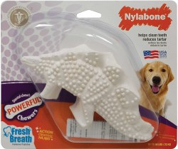 Nylabone - Dental Chew - Dinosaur
