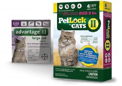 Petlock II - 9 lb and Over Cat - 4 months