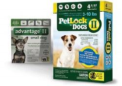 Petlock II - 3 - 10 lb- 4 months