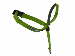 Petsafe Gentle Leader Head Collar - Large - Apple