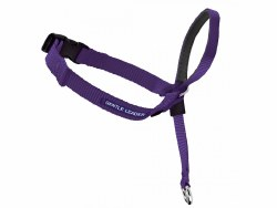Petsafe Gentle Leader Head Collar - Large - Purple