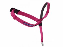 Petsafe Gentle Leader Head Collar - Large - Raspberry