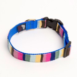 A Tail We Could Wag - At The Beach Bahama Collar - Large