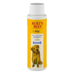 Burt's Bees - Soothing Skin Shampoo with Honey & Eucalyptus Skin - 16 oz