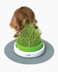 Catit - Cat Toy - Senses 2.0 - Grass Planter