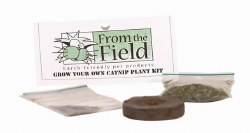 From the Field - Grow Your Own Catnip Plant Kit