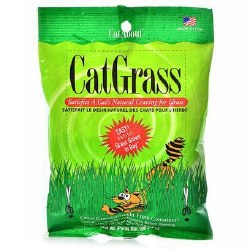 Cat About - Cat Grass - 100 grams
