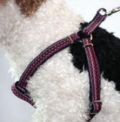 Goli Design - Haight Ashbery Harness - Huckleberry - Large