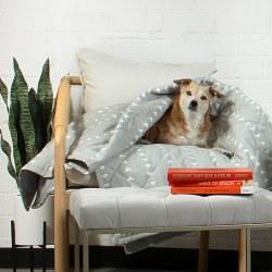 Molly Mutt - Pet Blanket - Be Still - Large