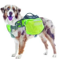Outward Hound - Quick Release Backpack - Green - Medium