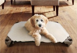 Pet Cot Dog Bed - Fleece Cover - Small