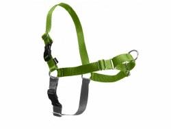 Petsafe - Easy Walk Harness - Medium - Apple