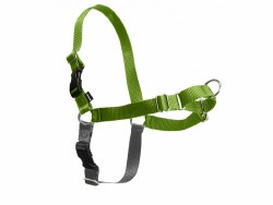 Petsafe - Easy Walk Harness - Extra Large - Apple