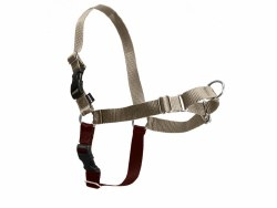 Petsafe - Easy Walk Harness - Extra Large - Fawn