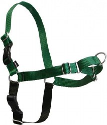 Petsafe - Easy Walk Harness - Large - Green