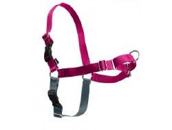 Petsafe - Easy Walk Harness - Large - Raspberry