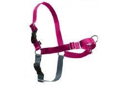 Petsafe - Easy Walk Harness - Extra Large - Raspberry