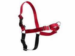 Petsafe - Easy Walk Harness - Large - Red