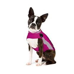 ThunderWorks - ThunderShirt Anxiety Jacket - Pink Polo - XS