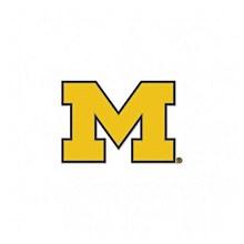University of Michigan Collector Pin