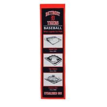 Detroit Tigers Banner - Stadium Evolution 8'' x 32''