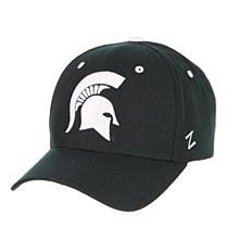 Michigan State University Hat - Competitor Snapback
