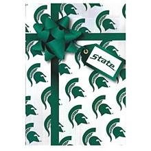 Michigan State Spartans Present Birthday Greeting Card