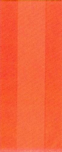Amscan Party Bags: Bright Orange Peel