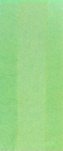 Amscan Party Bags: Bright Kiwi