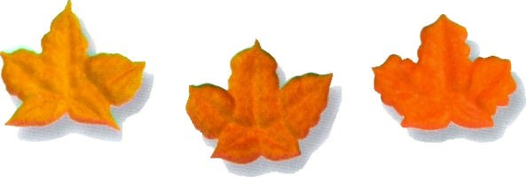 Icing Decorations: Fall Leaves