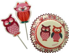 Wilton Cake Dec Kit Owl 24 Pc