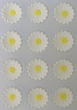 Wilton Royal Icing Daisies