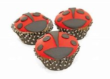Supply Kit For Ladybug Cupcake